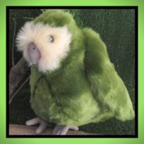 Kakapo Night Parrot Soft Toy
